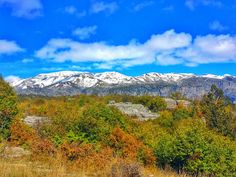 Hiking in Greece wasn't on my radar. But Epirus in the northwest part of Greece is a haven for hikers with an incredible 2000 km of trails! Country Maps, Greece Travel, Historical Sites, Beautiful Landscapes, Cool Places To Visit, Adventure Travel, Paradise, National Parks, World