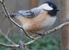This listing is for one black-capped chickadee, approximately 5 1/2 long and 4 1/2 tall.This perky little bird is needle felted of wool over a