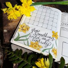 Spring is springing! Daffodils are my all-time favorite flower. Why? because where I live, they're always the first flowers to bloom. I hate the cold, and seeing these beautiful little bits of sunshine warm me up at the end of every winter. #bulletjournal #bujo #bujojunkies #bujocommunity #bulletjournallove #bujobeauty #planneraddict #plannernerd #journal #showmeyourplanner #moleskine #micron #bulletjournalmonthly #bujomonthly #bujomarch
