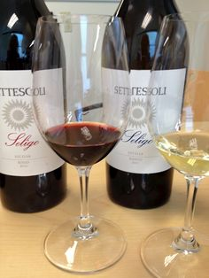 Settesoli Wines of Sicily
