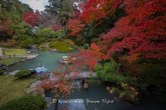 Today, I visited Shōren-in (青蓮院) in Kyoto-City. This is the Ryujin-no-ike pond (龍神池 or Heavenly Dragon Pond) decorated with deep red autumn leaves. The granite stone bridge in front is called Koryu-no-hashi (跨龍橋). The large rock in the middle of the pond looks like the back of a dragon, bathing in the pond.