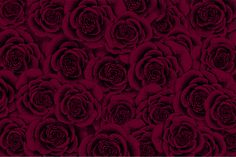 Rose #pattern  https://society6.com/product/rose49127_pillow#s6-6066229p26a18v126a25v193