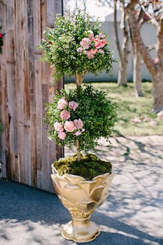 Rose topiary | Tess Pace Photography | see more on: http://burnettsboards.com/2015/08/modern-marie-antoinette/