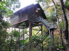 Treehouse at Permai Rainforest Resort in Borneo.