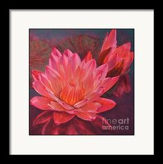 Framing suggestion for Water Lilies 7 Framed Print from an original painting by Fiona Craig