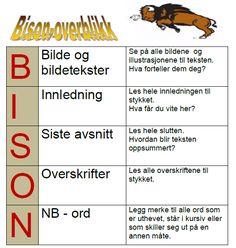 Bilderesultat for bison overblikk Bison
