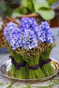Hyacinth bouquet (diy pictures - centerpiece - can be repurposed as gifts for your guests) ~ Margit Engens: 'Christmas joy and sounds heavenly' Fresh Flowers, Spring Flowers, Blue Flowers, Beautiful Flowers, Nice Flower, Diy Flowers, Flower Decorations, Beautiful Things, Deco Floral