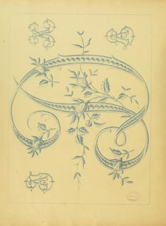 Vintage French embroidery pattern book for lingerie