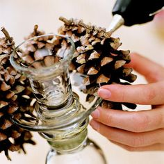 Pine Away    To make pinecone-adorned candlestick holders, find a holder with a large rim around its top half so that pinecones may easily be attached. Apply hot glue to one side of a pinecone and press it firmly against the rim of the candlestick. Continue until the rim is covered.