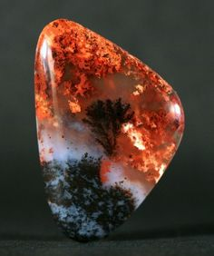 Plume Agate it looks like a wildfire