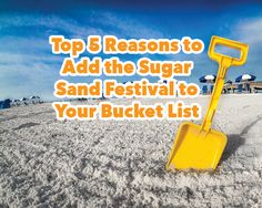 Top 5 Reasons to Add the Sugar Sand Festival to Your Bucket List Petersburg Florida, Clearwater Beach, Destin Beach, Rv Parks, Road Trippin, Florida Beaches, The St, International Airport, Tampa Bay