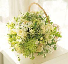 芽吹きを予感させる、春香る野花の共演
