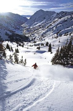 Ski Utah!  See even in winter you can reconnect with nature, and get your fitness in.