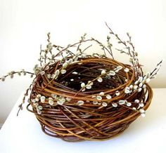 Pussy willow basket from 5preciousthings: Lizzie Farey Basket Maker . . .
