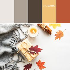 Autumn composition, gift box, autumn leaves, candle and spices on a white background Color Palette #396 – Ave Mateiu - Fall Autumn 2020, color palette, color palettes, colour palettes, color scheme, color inspiration, color combination, art tutorial, collage, digital art, canvas painting, wall art, home painting, photography, weddings by color, inspiration, vintage, wallpaper, background, rustic, seasonal, season, natural, nature