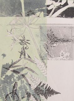Made by hand botanical monoprint. Fern leaf by fieldandhedgerow