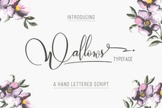 Wallows Typeface by banks on Creative Market