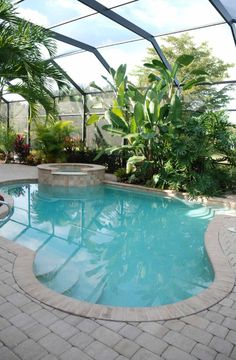 A small plunge pool with a freeform design near a lush planting bed filled with tropical plants. This pool is located indoors in a greenhouse like structure.