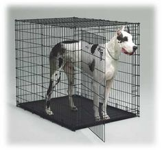 """Low Price Pet Supplies, 54"""" Giant Dog Crates, Beds, Replacement Pan, Giant Crate Bed"""