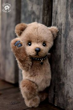Find images and videos about beautiful, bear and teddy on We Heart It - the app to get lost in what you love. Teddy Bear Images, Teddy Bear Pictures, My Teddy Bear, Cute Teddy Bears, Plush Animals, Felt Animals, Cute Baby Animals, Teddy Toys, Paddington Bear