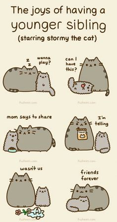 Pusheen the cat. Siblings I'm pusheen and the other cat is my sister Kawaii Pusheen, Pusheen Love, Pusheen Gif, Pusheen Stuff, Crazy Cat Lady, Crazy Cats, Nyan Cat, Grumpy Cat, I Love Cats