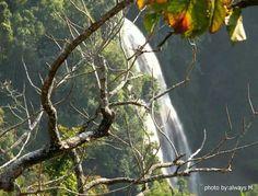 Dat Taw Chaing Water fall. Myanmar
