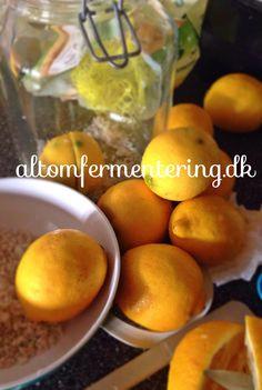 Marokkanske Citroner | ALT OM FERMENTERING – Fermentering på den nemme måde