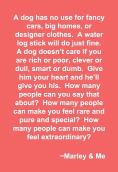 Marley & Me Quote. Quotes about Dogs. A dog has no care for fancy cars, big homes, or designer clothes. Dogs just need love. Movie Marley And me. Love My Dog, Miss My Dog, Puppy Love, Jiff Pom, Game Mode, Great Quotes, Inspirational Quotes, Dog Quotes Love, Meaningful Quotes
