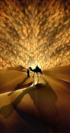 Saharan Sunset Amazing Pictures of the world #beautiful #world