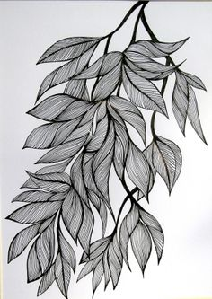 ink drawing leaves - Google Search