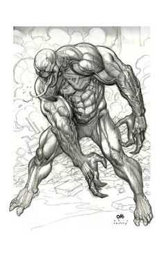 Venom by Frank Cho