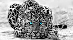 Köp Kanvas tavla, leopard, 50x90 cm från 599 kr – Billigt online