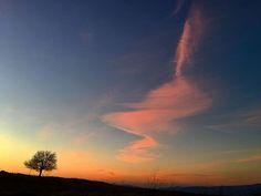 #travelgram #natgeoadventure #nature  #basilicata #landscape #landscapelovers #landscapephotography #landscapelovers #naturelover #naturelovers #calanchi #aliano #calanco #sunset #tramonto #amalfitana #basilicatacoasttocoast #argilla #volcano #sunsets #sunset🌅 #sunset_hub #sunsetporn #sunset_pics #sunsethunter #sunsetting #sunset_ig