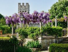 Free Image on Pixabay - Tuscany, Garden, Flower Chelsea Flower Show, Free Pictures, Free Images, Tuscany, Outdoor Structures, Garden, Flowers, Plants, Google Search