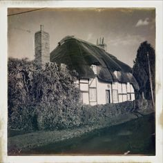 28th February 2014.The cottage at Swanmore, Hampshire.