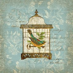Portfolio Canvas Decor Aviary 1 by Suzanne Nicoll Graphic Art on Wrapped Canvas Canvas Art Prints, Canvas Wall Art, Bird House Kits, Bird Aviary, Metal Wall Art, Vintage Images, Bird Houses, Wrapped Canvas, Graphic Art
