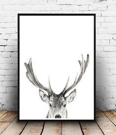 Deer Wall Art, Antler Print, Instant Download, Printable Art, Deer Antlers, Wall…