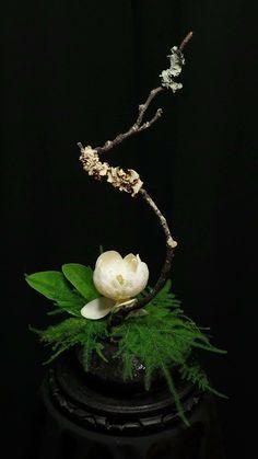 Ikebana                                                                                                                                                      More