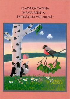 Pertti Ylinen - Elämä on täynnä . Finland, Friends, Words, Movies, Movie Posters, Amigos, Films, Film Poster, Cinema