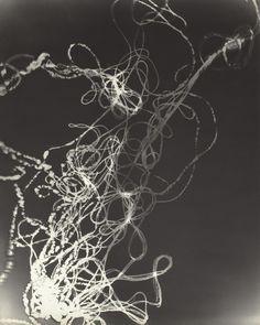 Untitled. Photogram. György Kepes (1906-2001)