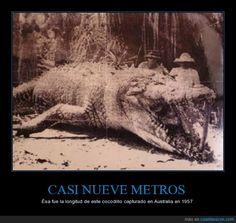 CASI NUEVE METROS