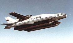 Beriev Bartini VVA 14   (with wings)