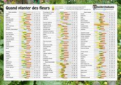 quand_planter_des_fleurs_A3.jpg (2481×1754)