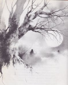 Stephen Gammell illustrations from 'Scary Stories to Tell in the Dark'.