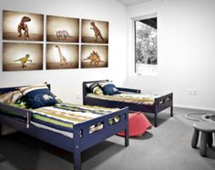 Triceratops Dinosaur One Photo Print Boys Room от shawnstpeter