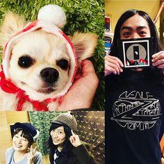 昨日はフランスからAvenue Zがライブしに来てくれたよ。かっこよかった🎵 THE STEPHANIESしろちゃんはお誕生日当日🎂おめでとうーーー🎉 ママと耳あてつきお帽子で仲良しやからワタチもお帽子かぶってみた💛バンド出演してたワタチの元先輩スタッフのマブチ君に貰ったやつ😊💓 #チワワ #chrhuahua #Mele #メレ #犬 #dog #癒し #看板犬 #アイドル犬 #idol #pet #ペット#親バカ #ライブハウス#livehouse#メレン#愛犬#cute#犬バカ部#happy#なんば#難波#大阪#osaka#avenuez #THESTEPHANIES#帽子