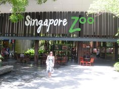 Day Two: Singapore Zoo and Night Safari Singapore Zoo, Travel Flights, Blog Pictures, Air Tickets, Continents, Signage, Entrance, Bali, Safari