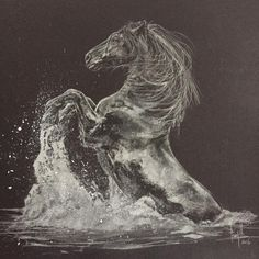Tony O'Connor Equine Art www.whitetreestudio.ie