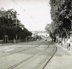 Avenida 24 de Outubro no bairro Moinhos de Vento em abril de 1961.