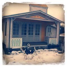 Schladitzer See - Biedermeierstrand - Dogs